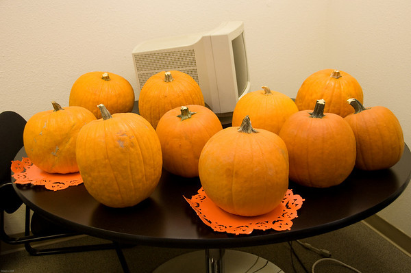 Pumpkin Carving at SL in October 2008